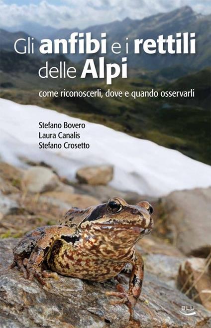 Gli anfibi e i rettili delle Alpi. Come riconoscerli, dove e quando osservarli - Stefano Bovero,Laura Canalis,Stefano Crosetto - copertina