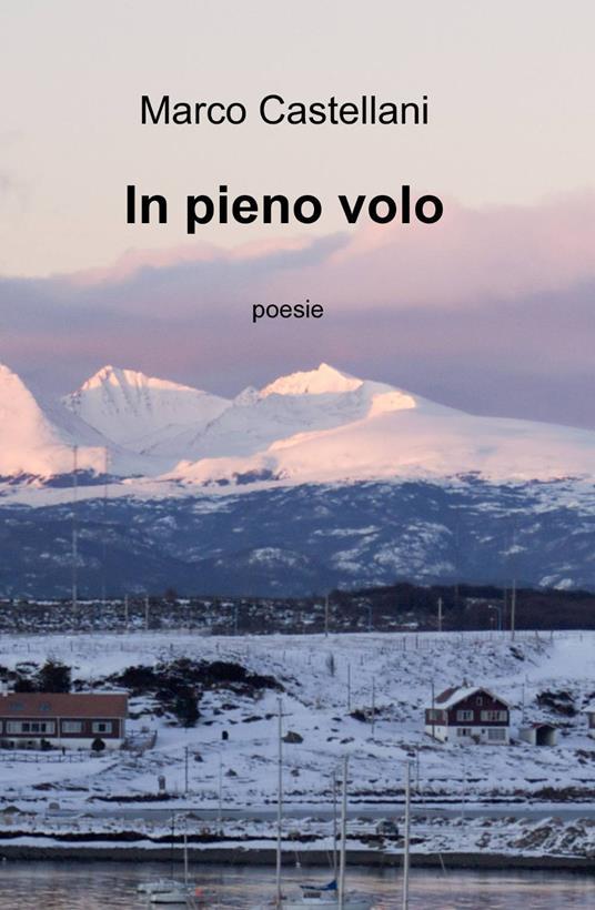 In pieno volo - Marco Castellani - copertina