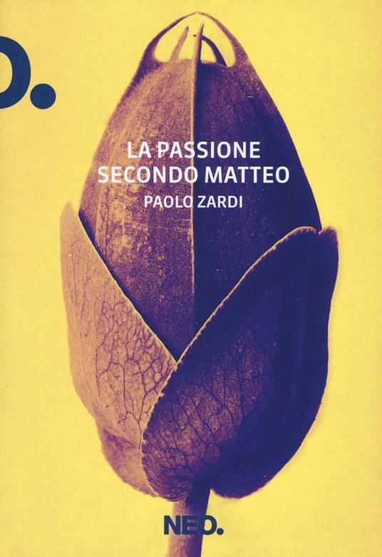 La passione secondo Matteo - Paolo Zardi - copertina