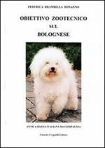 Obiettivo zootecnico sul bolognese. Antica razza italiana da compagnia