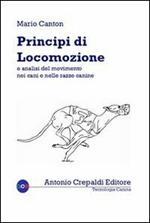 Principi di locomozione e analisi del movimento nei cani e nelle razze canine