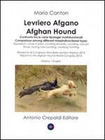 Levriero afgano. Confronto tra le varie tipologie morfofunzionali-Afghan hound. Comparison among different morphofuncional types