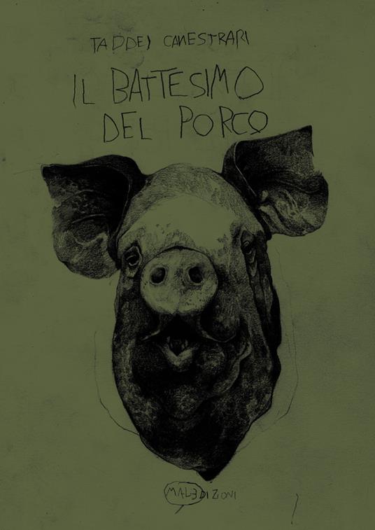 Il battesimo del porco - Marco Taddei,Samuele Canestrari - copertina