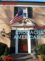 Cronache americane