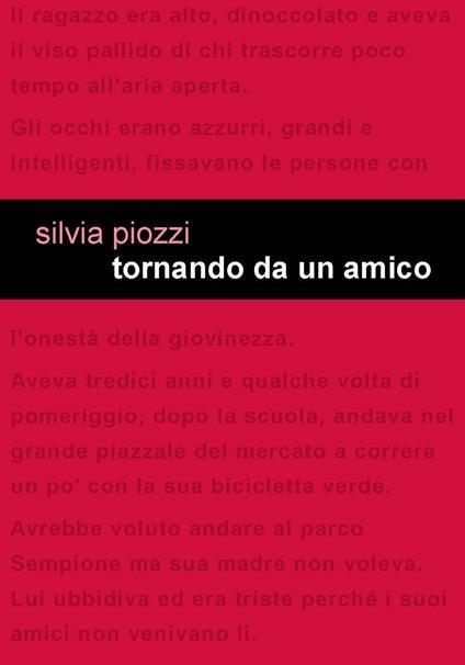 Tornando da un amico - Silvia Piozzi - copertina
