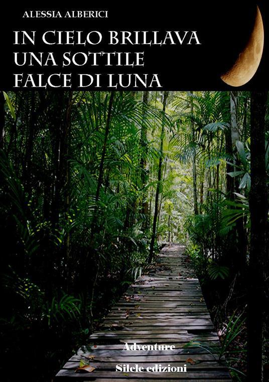 In cielo brillava una sottile falce di luna - Alessia Alberici - copertina