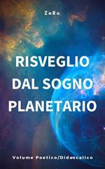 Risveglio dal sogno planetario. Vol. 3