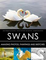 Swan Premium Collection - Photos, Paintings and Sketches