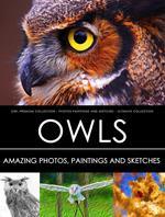 Owl Premium Collection - Photos, Paintings and Sketches - Ultimate Collection