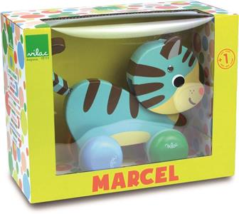 Marcel il gatto trainabile