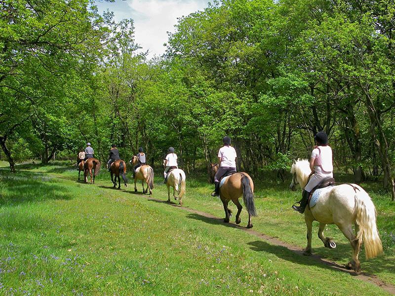 SMARTBOX - Fuga di 2 giorni con passeggiata a cavallo ...