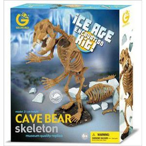 Cave Bear Skeleton - 2