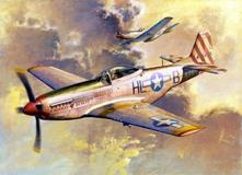 P-51d Mustang Fighter 1:32 Plastic Model Kit RIPTR 02275
