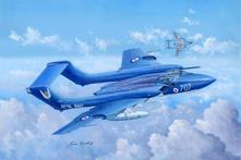 De Havilland Dh.110 Sea Vixen Faw.2 Fighter 1:48 Plastic Model Kit RIPTR 05808