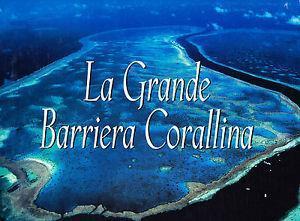 La grande barriera corallina. Ediz. illustrata